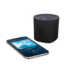 Bluesound speaker_12